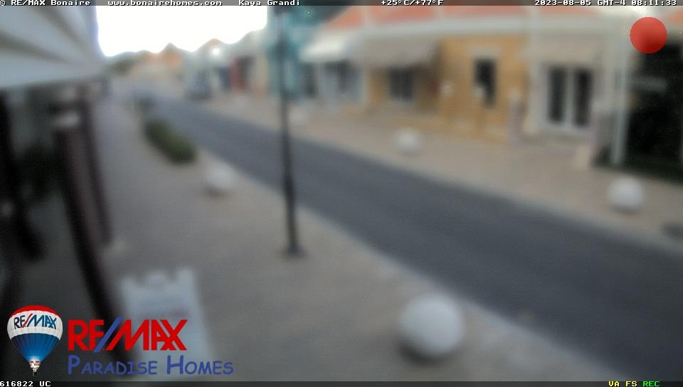 Camera Live Image